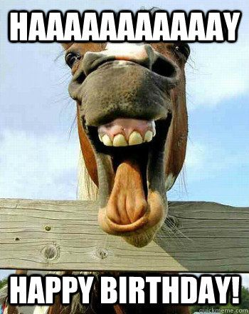 Happy Birthday Funny Animation : happy, birthday, funny, animation, Happy, Birthday, Funny, Animation, Letters, Singing., Description, Pinterest.com., Searched, Bing.com/images, Horses,, Laughing, Horse,, Horses