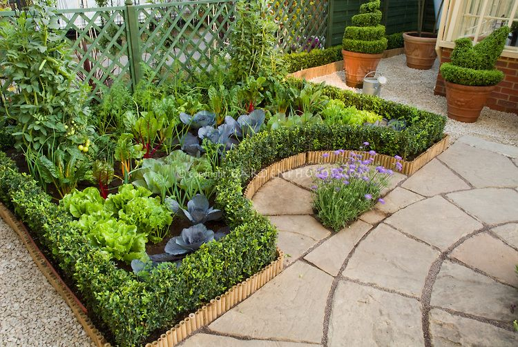 Container vegetable and herb garden on deck growing for Patio herb garden designs containers
