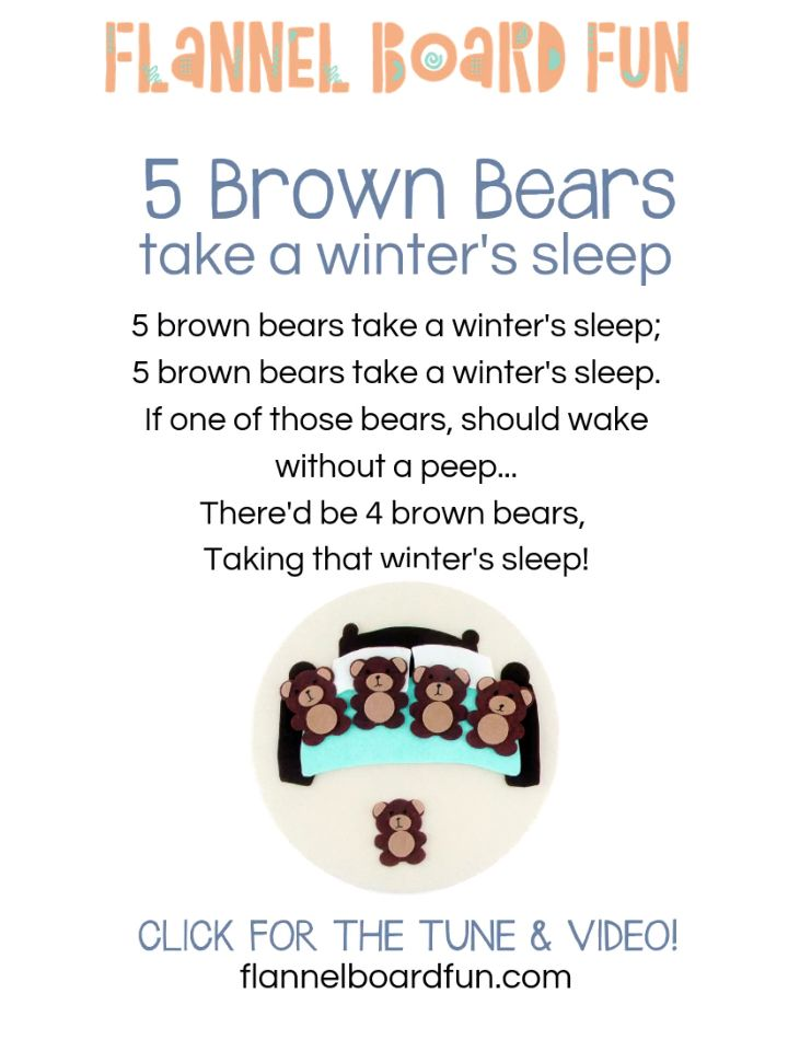 Five Brown Bears Lyrics and Video