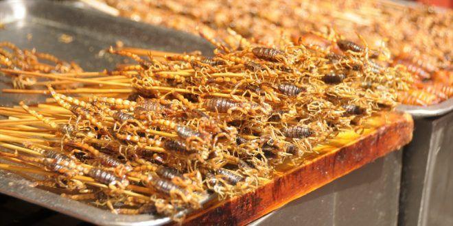 بالصور مطاعم الحشرات في الصين تقدم لزبائنها لذ ات ونكهات مختلفة