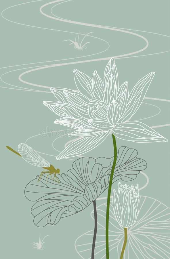 Lotus. Waterlily. Dragonfly. Vector. Illustration Stock Vector - Illustration of botanical, leaf: 25480734