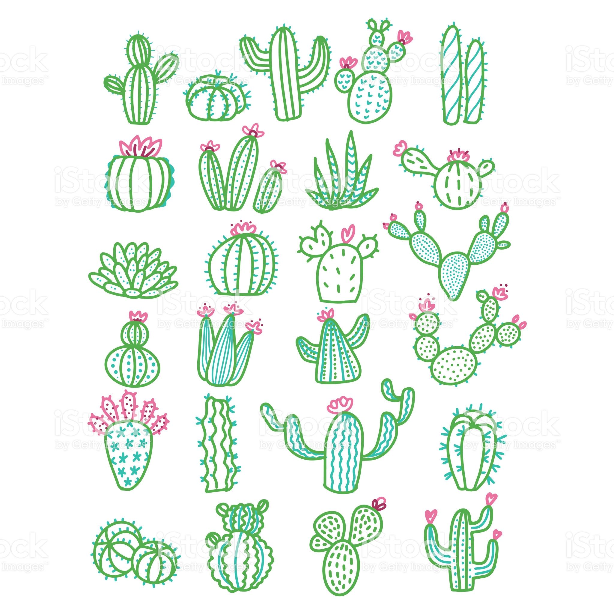 Cute hand drawn vector cactus without pots color outlined ...  Cactus Flower Outline