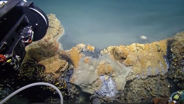 Brine Pool Jacuzzi Of Despair Pool Bottom Of The Ocean Science And Technology