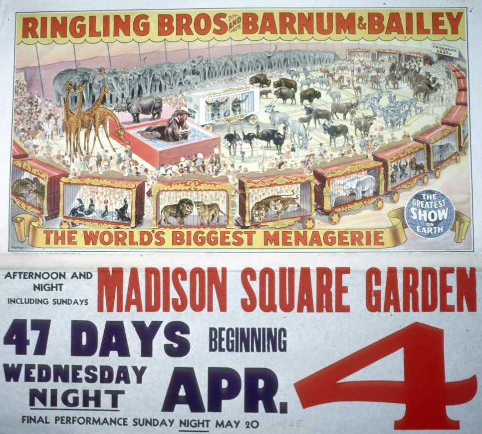 Pin By Robert Stead On Vintage Circus Posters Pinterest