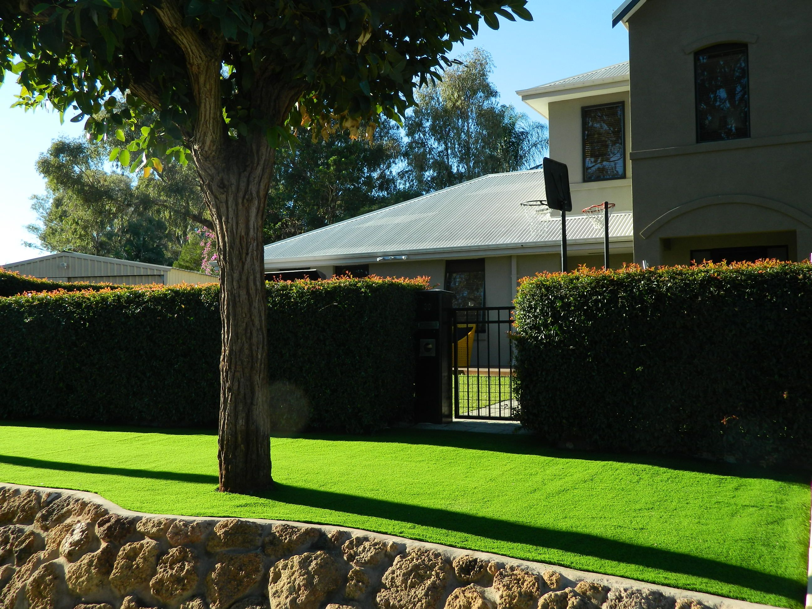 17 DIY Artificial Grass PerthSteps To Install Synthetic