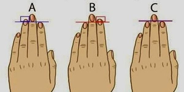 Pin by LifeBuzz on Advice | Finger length meaning, Finger