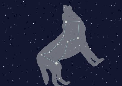 118bbc6a5 Lupus: The Night Wolf | Astronomy/Constellations/Seen | Lupus tattoo ...