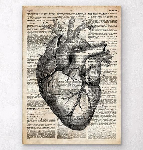 Heart Anatomy Art Ii Old Dictionary Page Awesome Art Pinterest