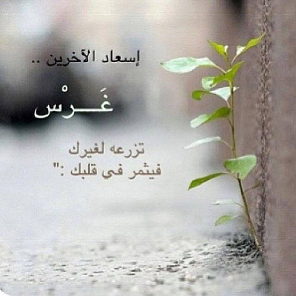 النجاح نت On Twitter Wise Words Quotes Arabic Love Quotes Words Quotes
