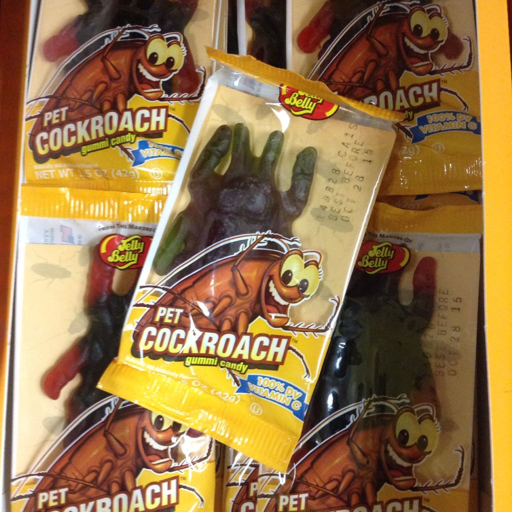 Pet Cockroaches that you can eat! Because they're gummy