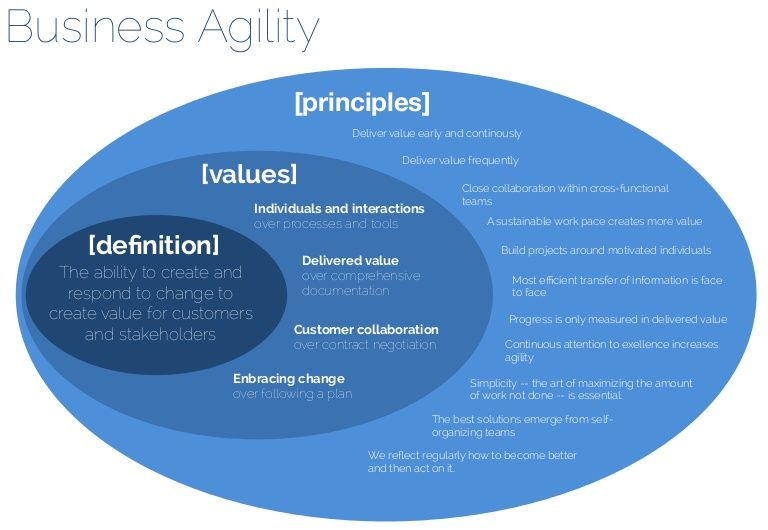 agile values and principles lightly adapted for a business