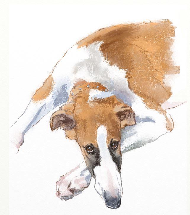 Digital Painting By Robyn Rinehart Of Cordova Valentina As A Puppy