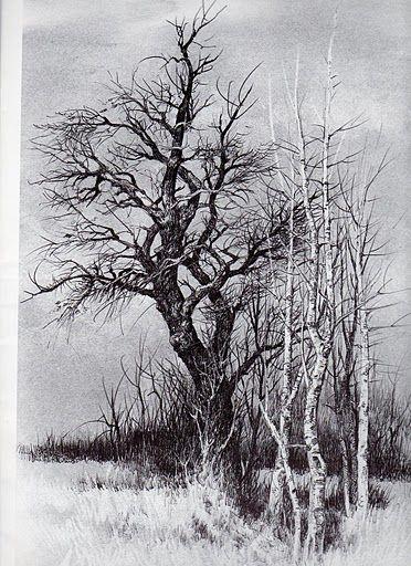 Pin By Roberto A On Landscape 3 Landscape Drawings Landscape Sketch Tree Drawings Pencil