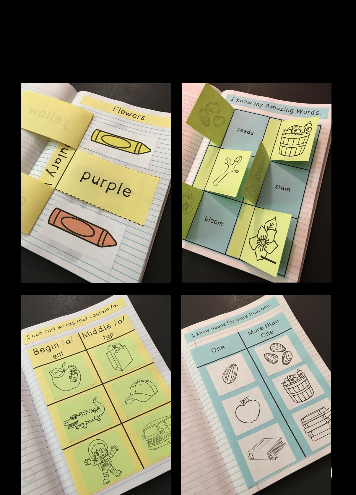 Flowers Interactive Notebook Reading Street Kindergarten