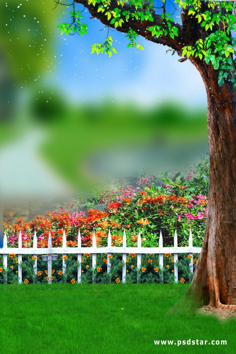 Outdoor Natural Studio Background Hd Psdstar Com Wedding Background Images Photoshop Digital Background Blurred Background Photography