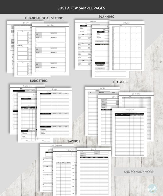 BUDGET PLANNER, FINANCE PLANNER, MONEY PLANNER, SAVINGS, DEBT