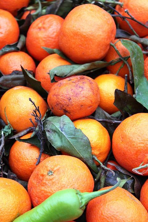 Oranges Market Food 100 Free photo on Mavl Oranges
