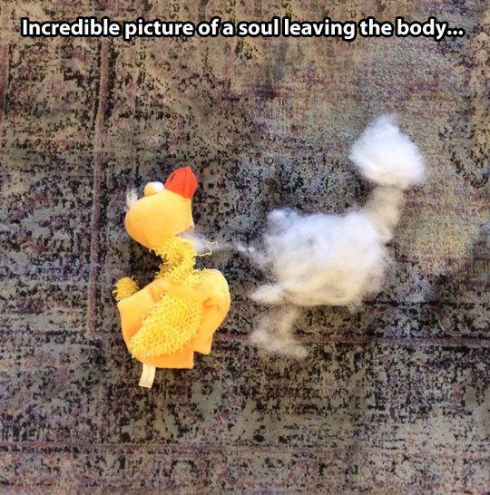 Amint a lélek elhagyja a testet.