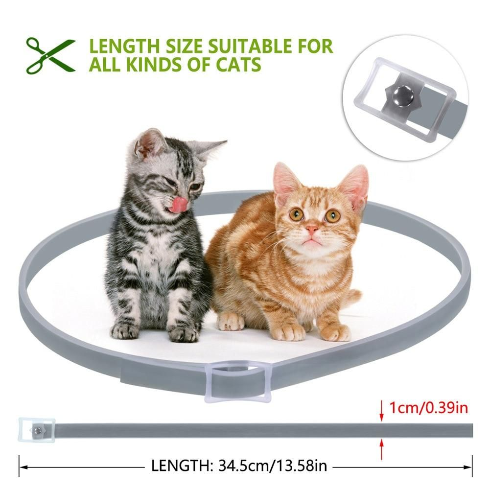 Pro Guard Flea And Tick Collar For Cats Cat Plants Cat Fleas Cats