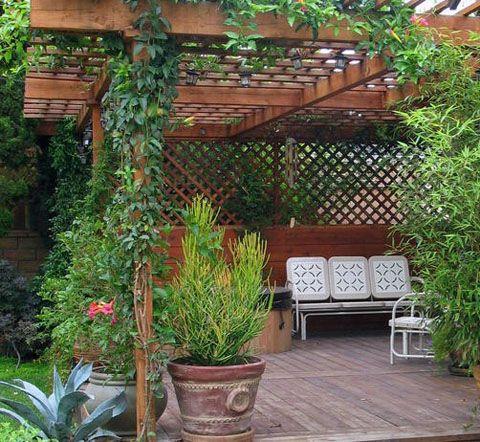 Desain Taman Gantung Rumah Minimalis Outdoor Pergola Wood
