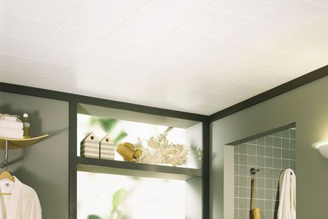 Gentil Bathroom Ceiling Ideas From Armstrong