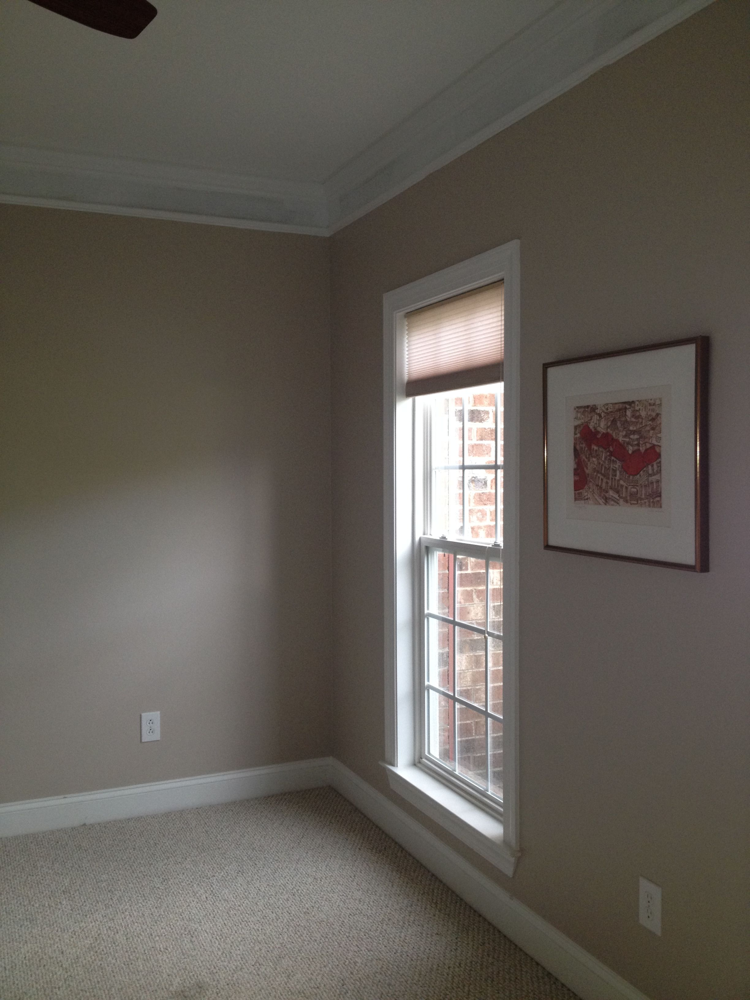 Taupe Paint Colors Living Room: New Color Walls. Behr's Perfect Taupe. It's A Little On