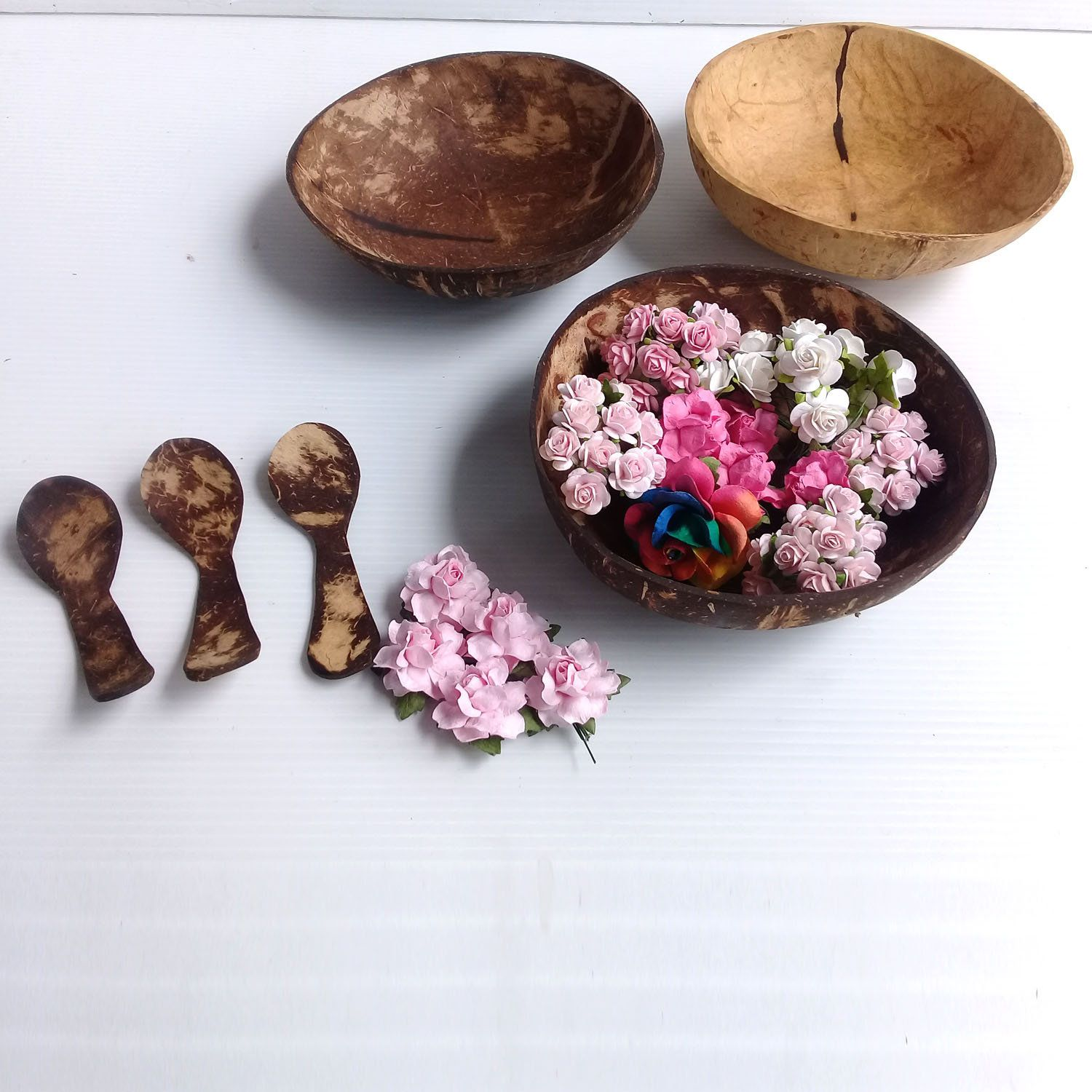 set of smallest  size coconut shell plates set 3 bowls,6x 2 inch  vegan gift,wooden gift,birthday gift,easter,wedding gift,gift