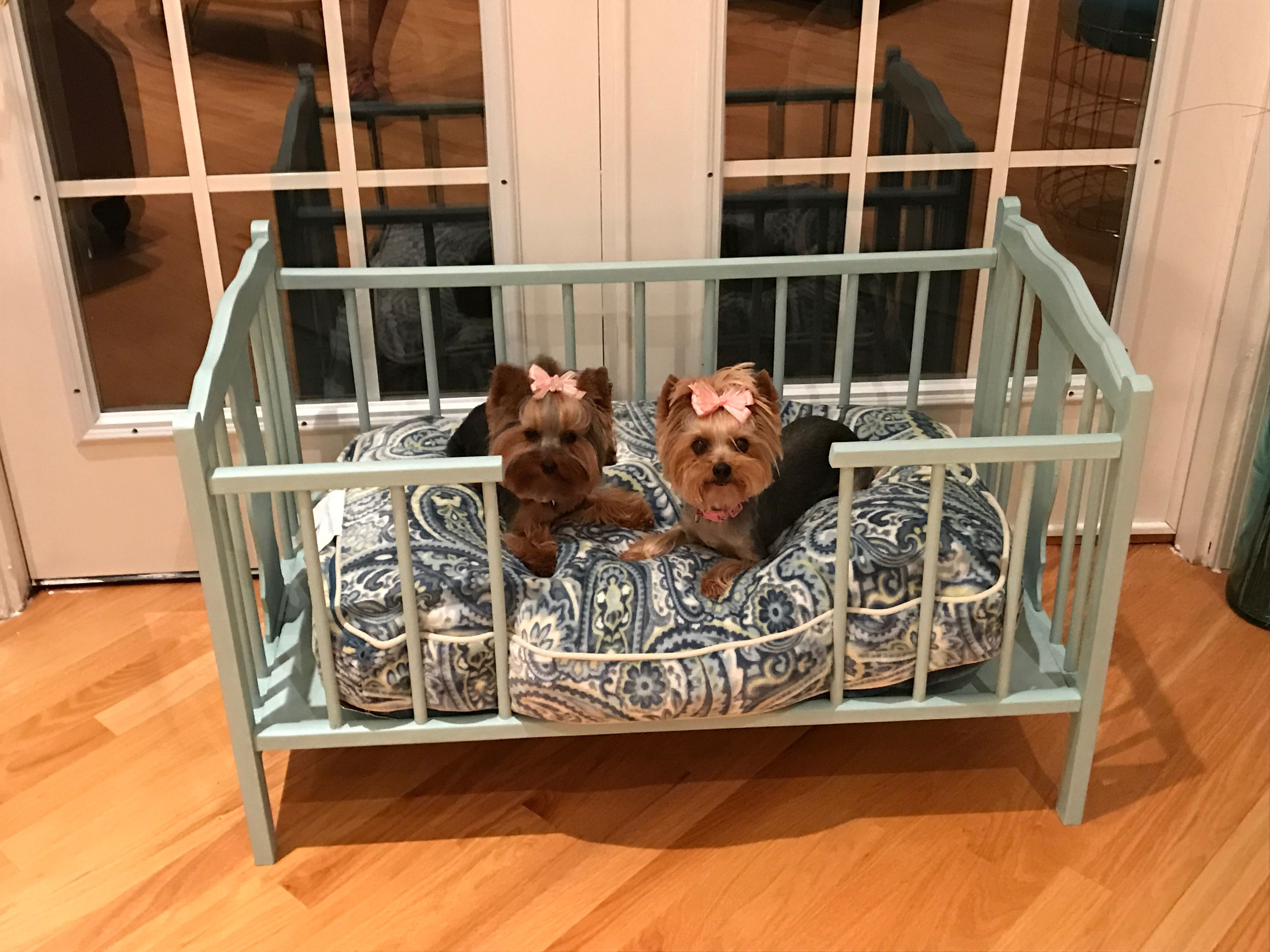Double Duty Furniture 9 Affordable Favorites That Save Space Pet Sofa Bed Cool Dog Beds Pet Sofa