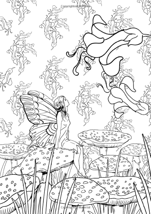 Art Therapy The Enchanted Forest 100 Designs Colouring In And Relaxation Marthe Mulkey Gardens Coloring Book Fairy Coloring Pages Enchanted Forest Coloring