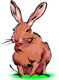 image result for rabbit clip art critter cip art dsna 113 rh pinterest nz clip art rabbit footprints clip art rabbit eating leaves