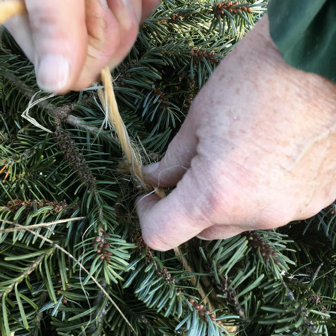 Balsam Boughs Get Bundled In Mid November For Wreath Making Later In The Month Christmas Tree Farm Tree Farms How To Make Wreaths