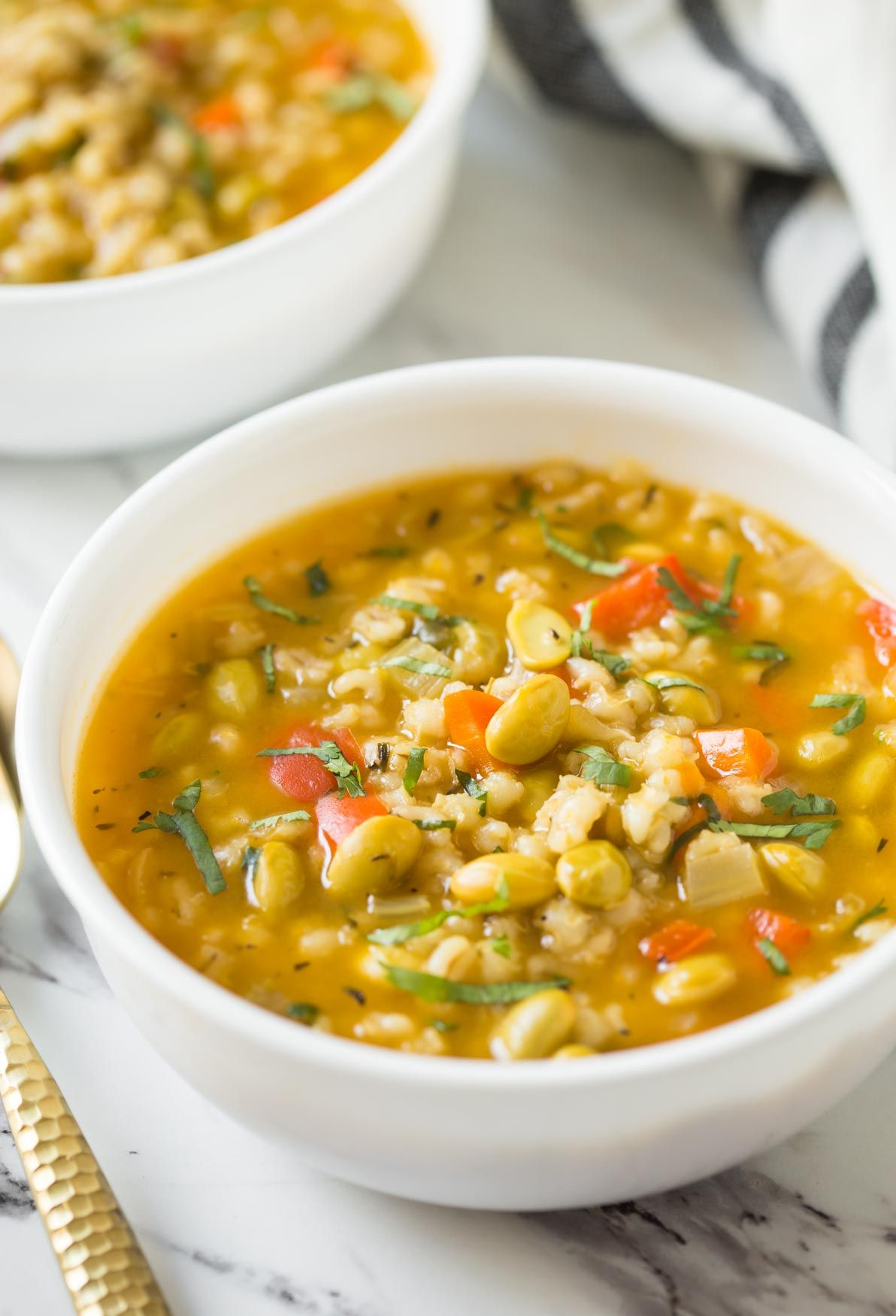 Nutricious Instant Pot Vegetable Barley Soup Watch What