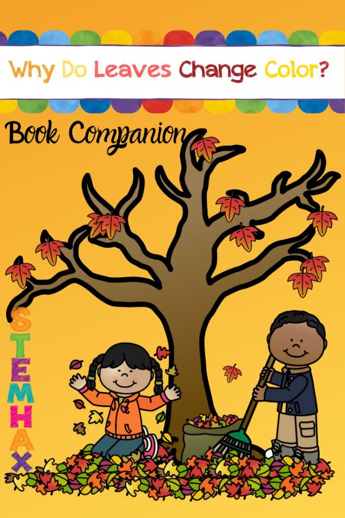 Why Do Leaves Change Color - Book Companion FUN! Math and Word Work!