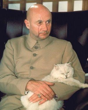 James Bond Katze