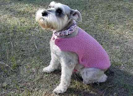 Free Knitting Patterns For Very Small Dogs : One-Piece Dog Sweater Pattern For Small Medium & Large ...