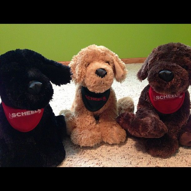 Free Plush Dog On Black Friday At Annafrohlich Has Participated Three