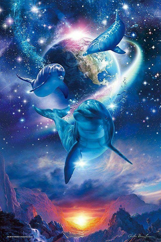 Pin By Anneke On Dolphins Fantasy Dolphin Art Beautiful
