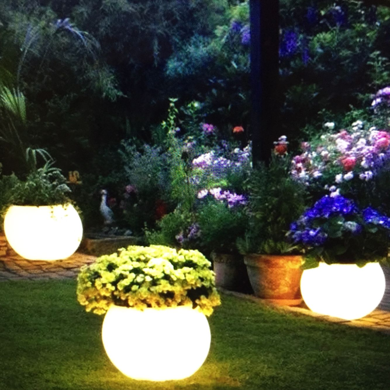 Buy a flower pot that you really like and use Rustoleum's Glow-in-the-dark paint to paint the pot. During the day, the paint will absorb the sunlight and at night the pots will glow!