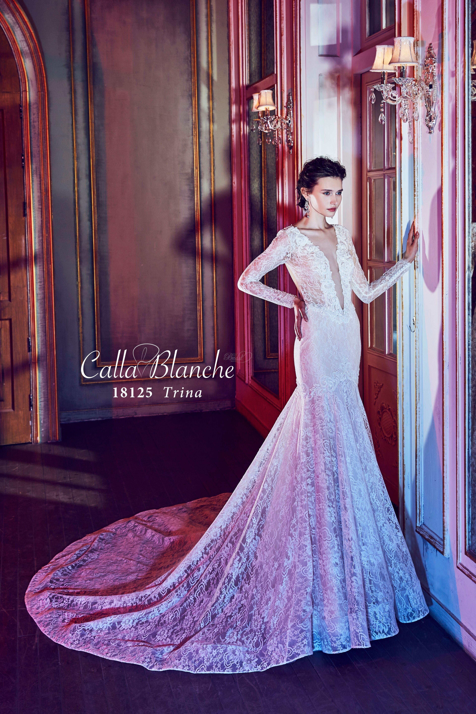 Lujoso Dreams Wedding Dresses Ideas Ornamento Elaboración Festooning ...
