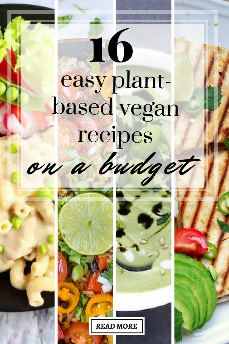 16 Easy Plant Based Vegan Recipes On A Budget Recipes