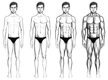 Corpos Masculinos Tipos De Corpo Masculino Corpo Masculino