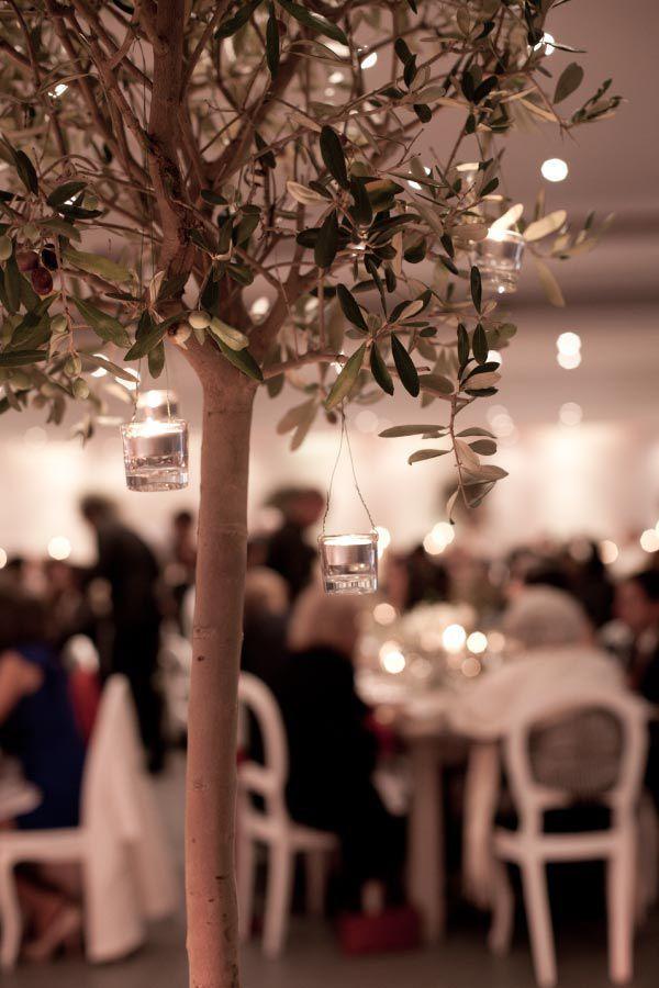 Image result for indoor winter wedding olive trees