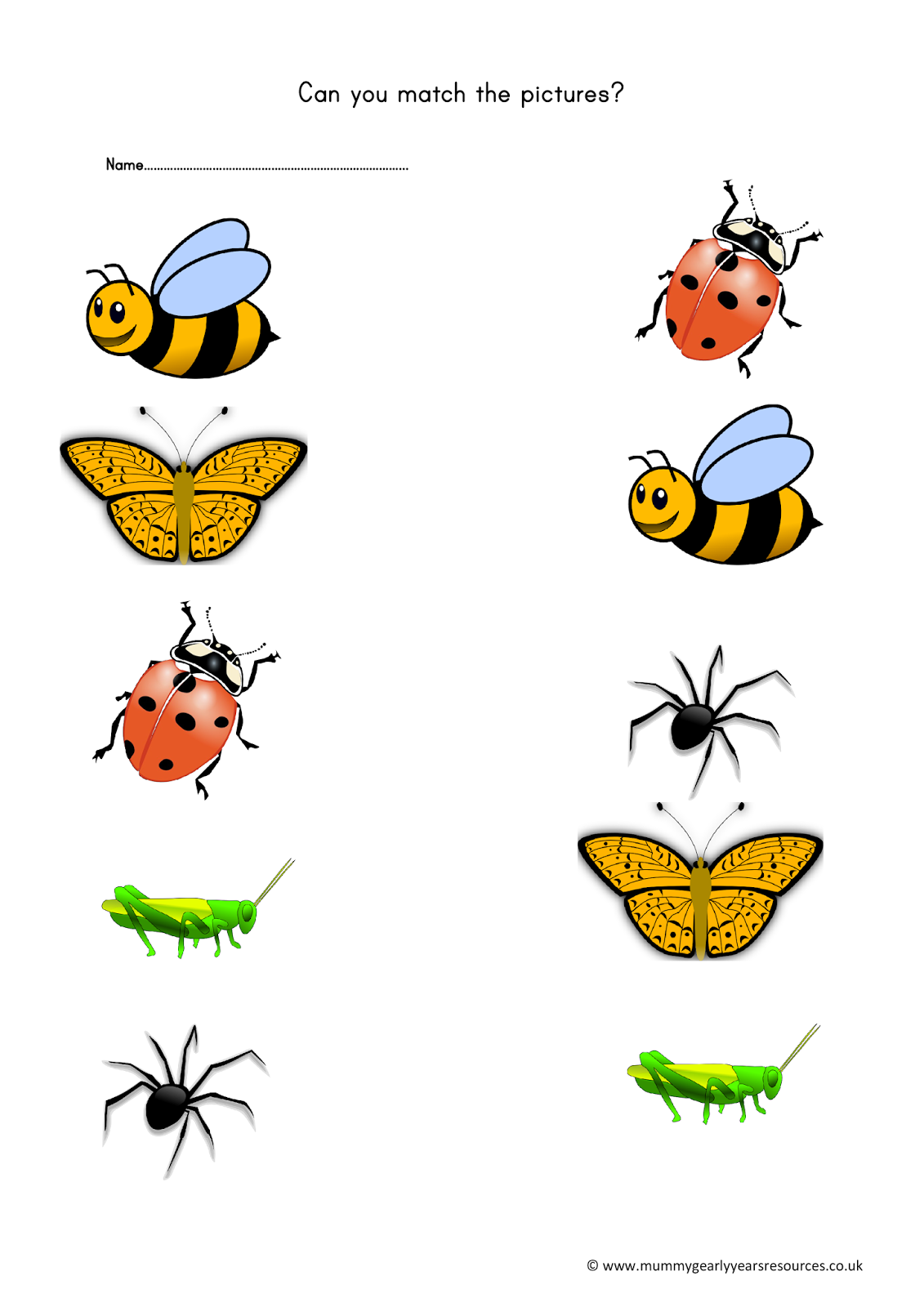 Mini Beasts Matching Pictures Worksheet