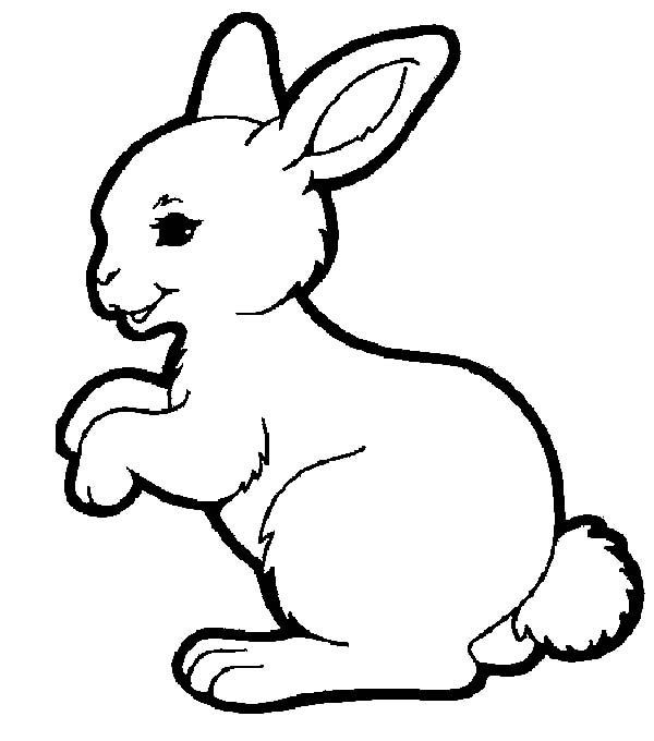 Adorable Hopping Bunny Coloring Pages Kids Play Color Bunny Coloring Pages Rabbit Colors Animal Coloring Pages