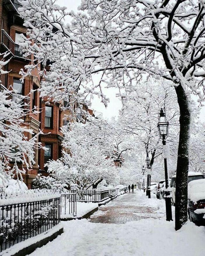Stunning Winter Aesthetics Winter Scenery Winter Images Winter