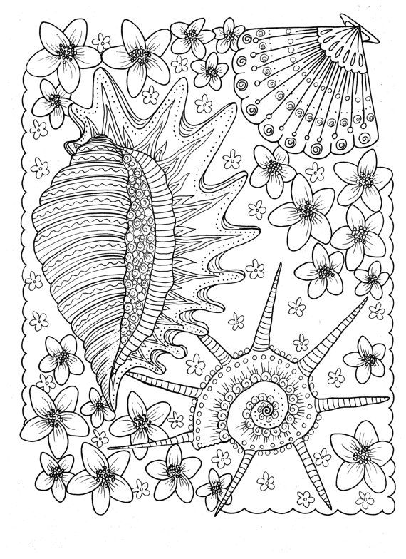 5 Pages Of Shells To Color Digital Instant Download Coloring Adult