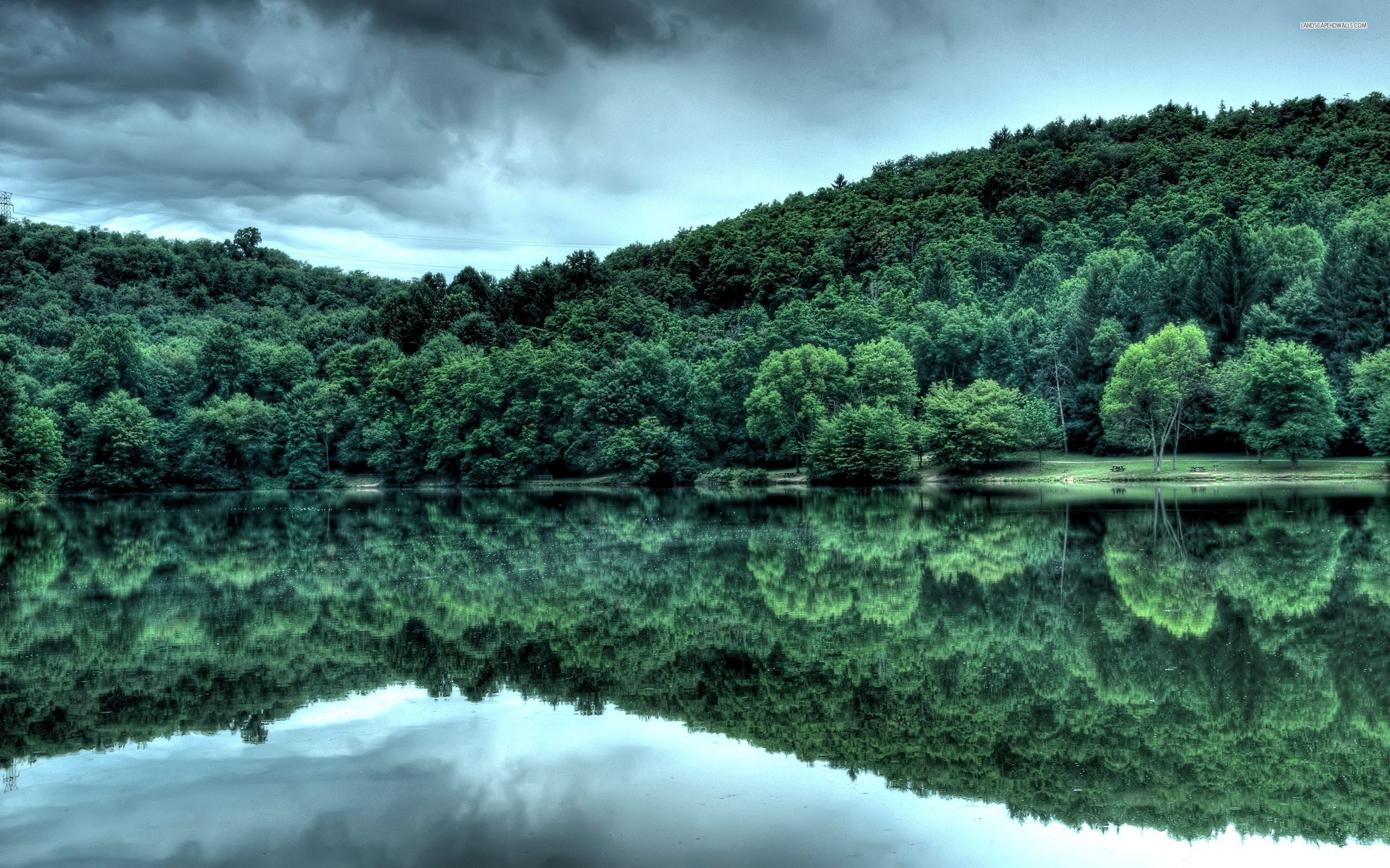 Forest Lake 34 2560 1600 Hd Wallpaper Nature Wallpaper Landscape Forest Lake