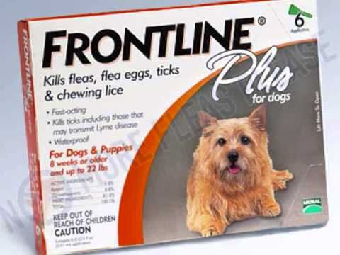 Frontline Plus For Dogs And Cats Frontline Plus For Dogs Frontline Plus For Cats Fleas