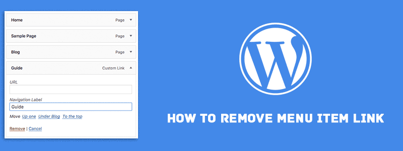 How To Get Rid Of Read More On WordPress