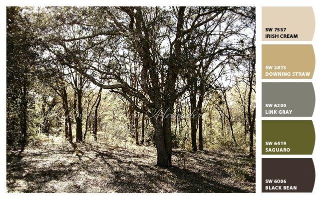 The Woods by Melinda Marie Alexander.